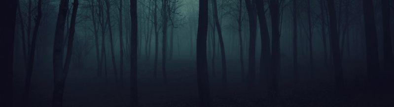ghostwoods2.PNG